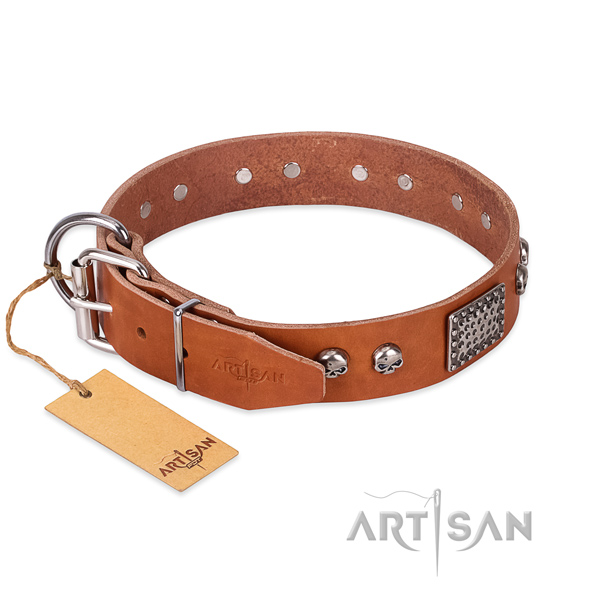 Rust resistant D-ring on everyday use dog collar