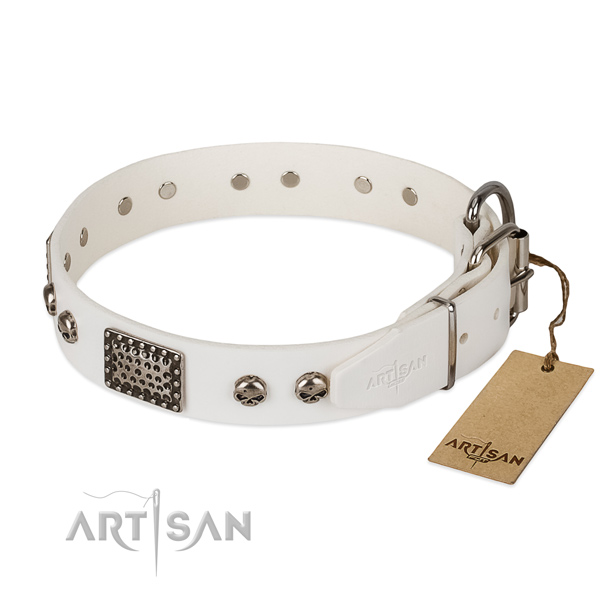 Durable D-ring on daily walking dog collar