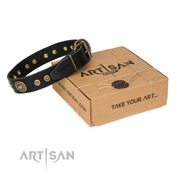 Full grain leather dog collar made of top rate material with rust-proof fittings