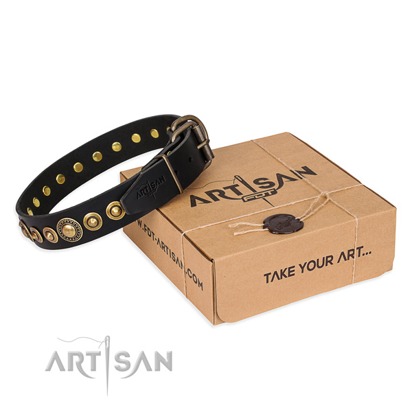 Reliable full grain leather dog collar created for handy use
