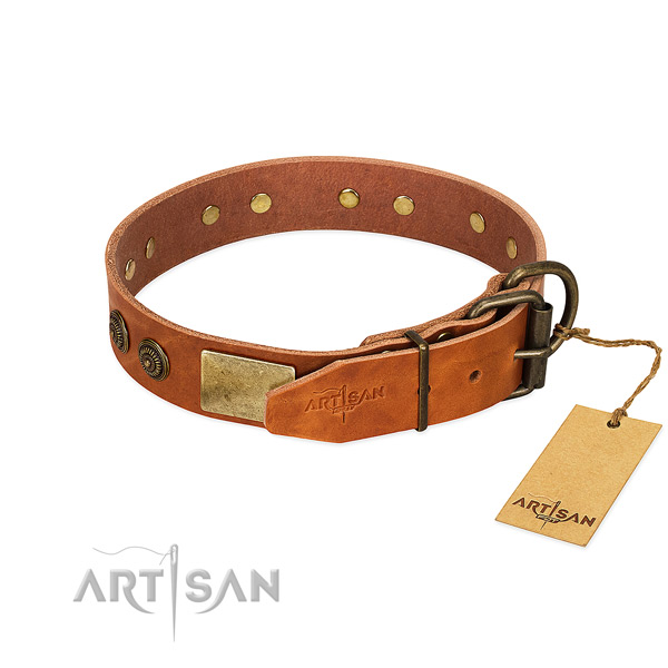 Strong buckle on full grain leather collar for daily walking your canine