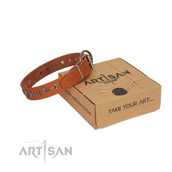 Everyday use dog collar of finest quality full grain leather with decorations