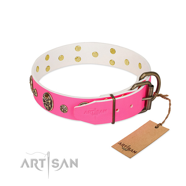 Rust resistant traditional buckle on full grain leather collar for stylish walking your doggie