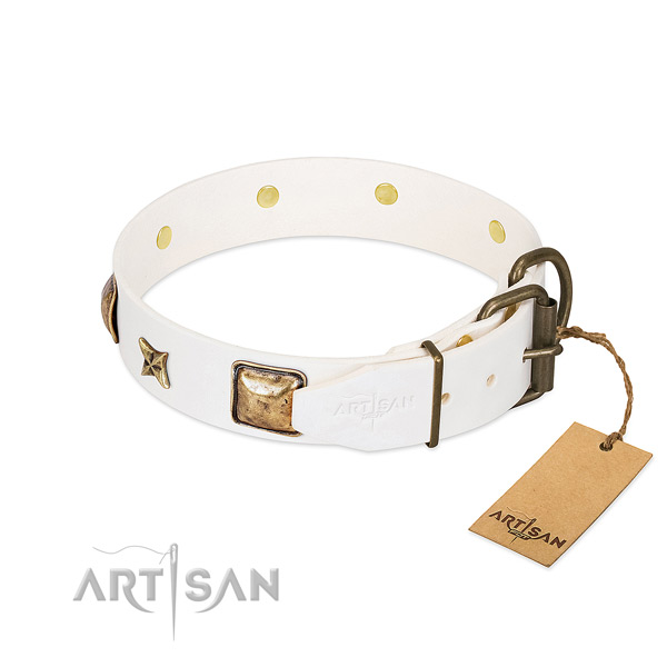 Full grain leather dog collar with reliable traditional buckle and studs