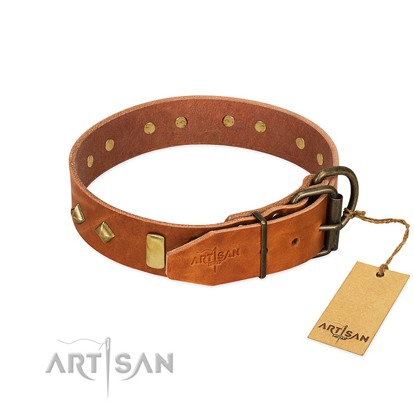 Walking full grain genuine leather dog collar with extraordinary embellishments