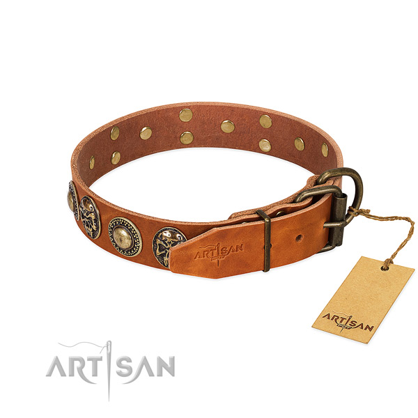 Rust resistant decorations on daily use dog collar