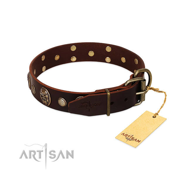 Rust-proof embellishments on walking dog collar