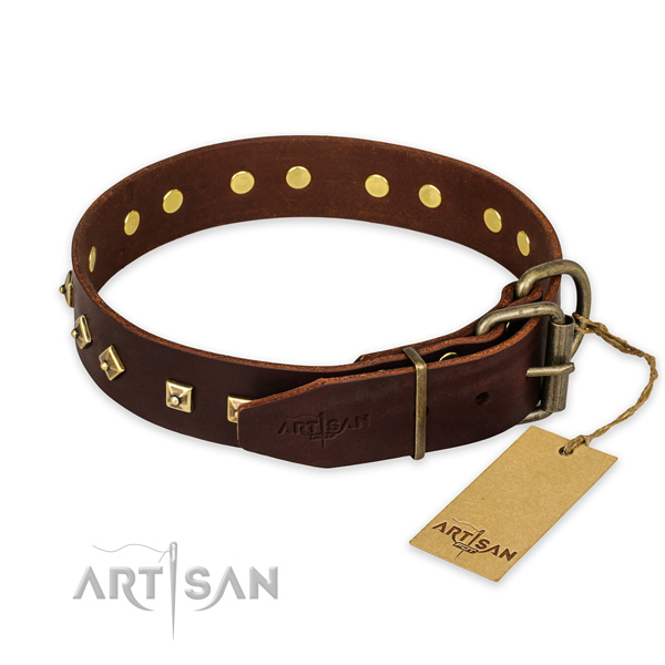 Strong hardware on leather collar for stylish walking your canine