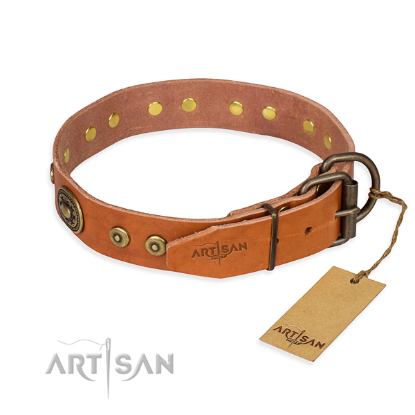 Leather dog collar made of top notch material with reliable studs