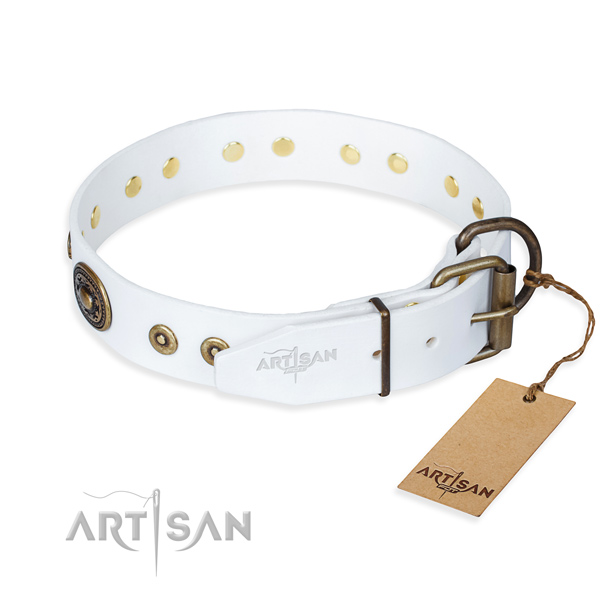 Full grain natural leather dog collar made of quality material with corrosion resistant embellishments