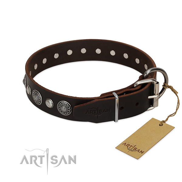 Top notch full grain genuine leather dog collar with remarkable adornments