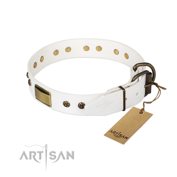Natural genuine leather dog collar with rust resistant fittings and embellishments