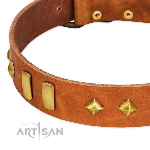 Daily walking natural leather dog collar with stylish adornments