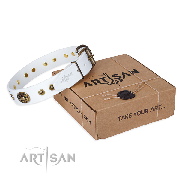 Genuine leather dog collar made of gentle to touch material with reliable hardware