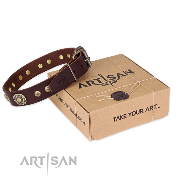 Reliable hardware on full grain leather dog collar for everyday walking