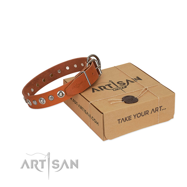 Top quality genuine leather dog collar with designer adornments