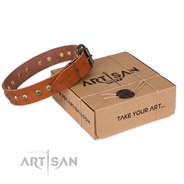 Rust resistant buckle on full grain leather collar for your stylish four-legged friend