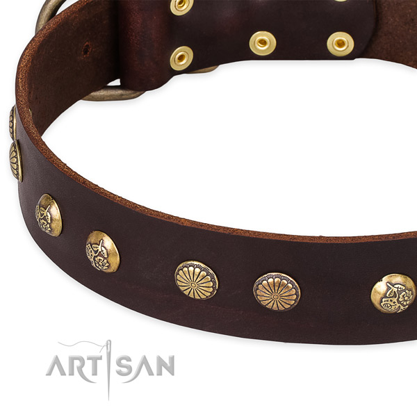 Full grain natural leather collar with corrosion proof traditional buckle for your attractive doggie