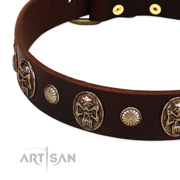 Full grain leather dog collar with adornments for daily use
