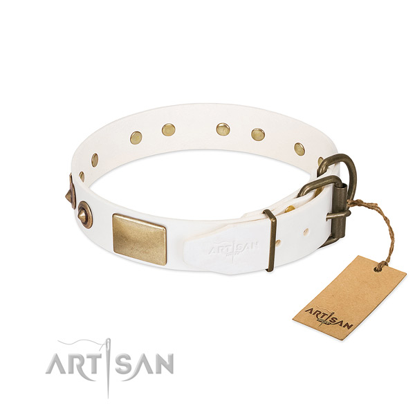 Durable studs on full grain natural leather dog collar for your pet