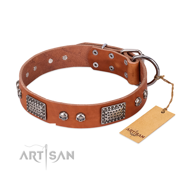 Easy wearing full grain leather dog collar for everyday walking your dog