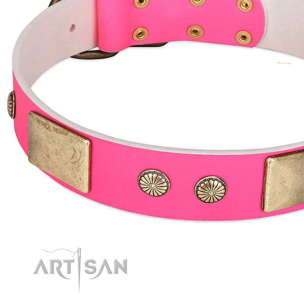 Rust-proof embellishments on full grain leather dog collar for your pet