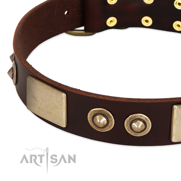 Reliable traditional buckle on full grain genuine leather dog collar for your pet
