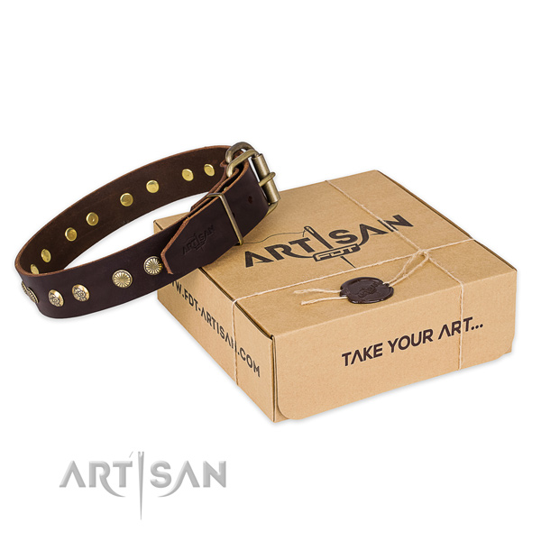 Reliable hardware on full grain leather collar for your attractive four-legged friend