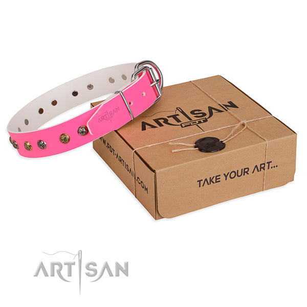 Comfortable wearing dog collar with Incredible strong adornments