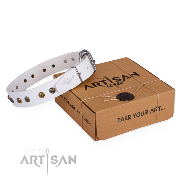 Basic training dog collar with Incredible strong adornments