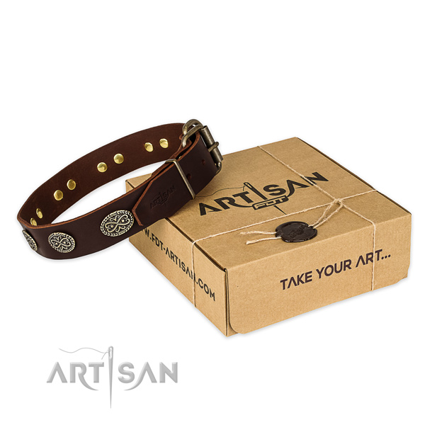 Reliable traditional buckle on full grain genuine leather collar for your impressive doggie