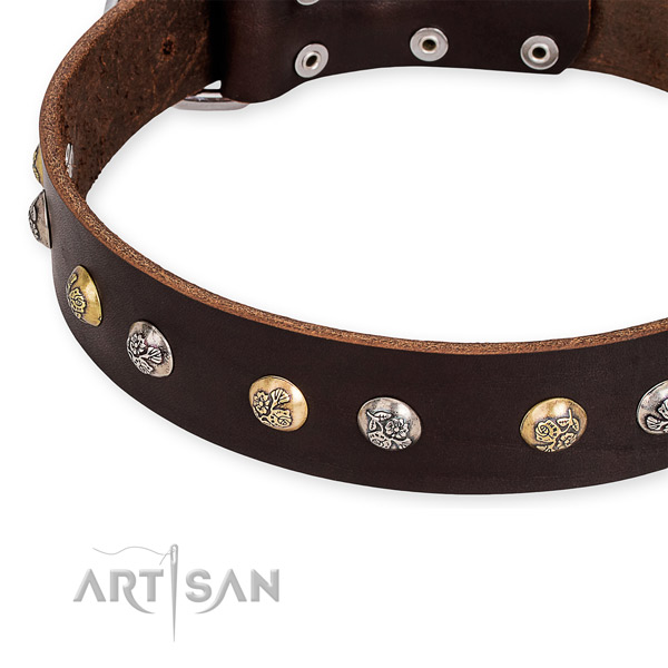 Full grain natural leather dog collar with exceptional rust-proof adornments