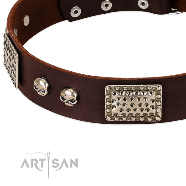 Corrosion proof studs on full grain leather dog collar for your canine