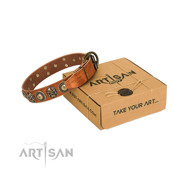 Rust resistant adornments on dog collar for daily walking