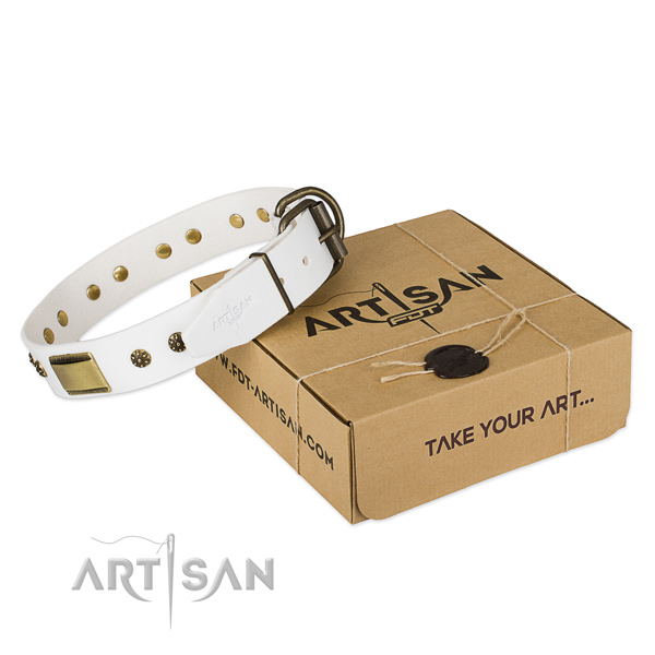Top notch full grain leather collar for your lovely doggie