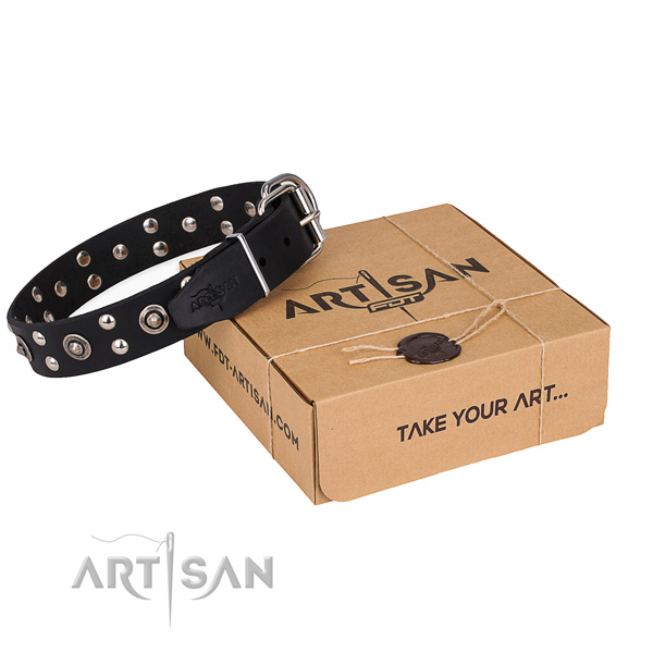 Everyday walking dog collar with Exquisite durable adornments