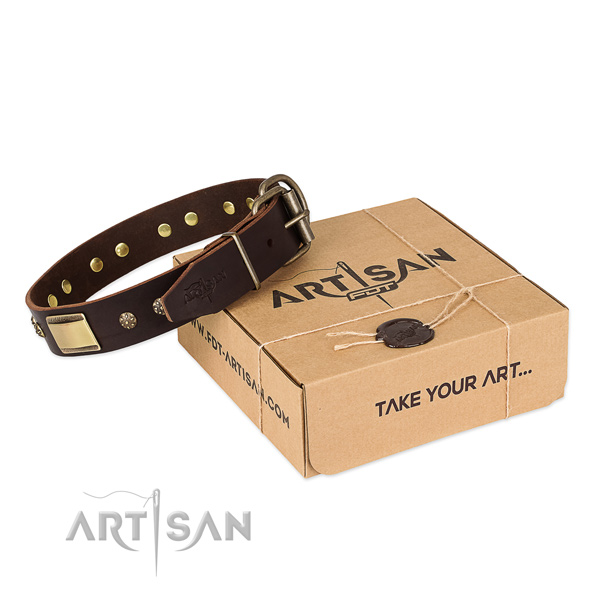 Impressive genuine leather collar for your attractive canine