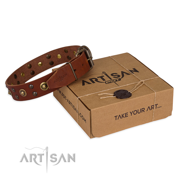 Durable buckle on genuine leather collar for your attractive four-legged friend