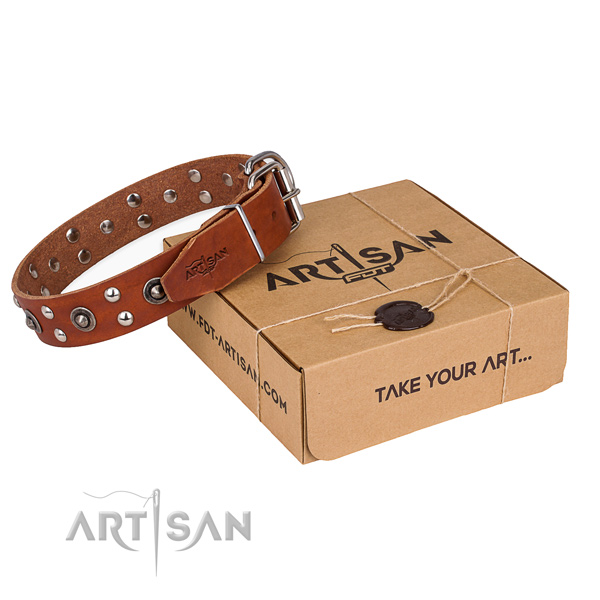 Rust resistant fittings on genuine leather collar for your beautiful pet