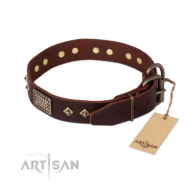 Full grain leather dog collar with rust-proof hardware and embellishments