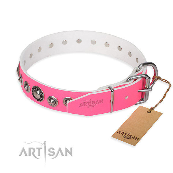 Leather dog collar made of reliable material with rust-proof embellishments