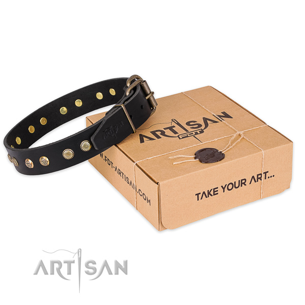 Strong buckle on full grain natural leather collar for your beautiful canine