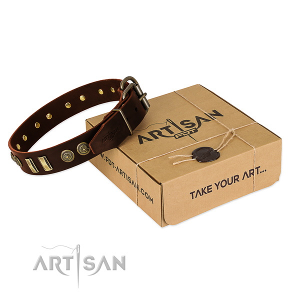 Rust resistant adornments on leather dog collar for your four-legged friend
