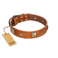 """Celtic Tunes"" FDT Artisan Tan Leather Belgian Malinois Collar Adorned with Stars and Squares"