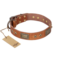"""Catchy Look"" FDT Artisan Decorated Tan Leather Belgian Malinois Collar"