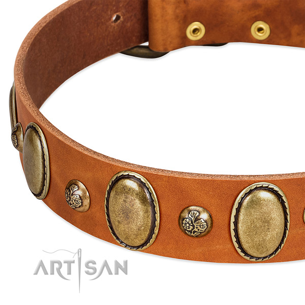 Full grain leather dog collar with unique adornments
