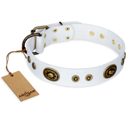 """Magnetic Appeal"" FDT Artisan White Leather Belgian Malinois Collar with Old Bronze Look Decorations"