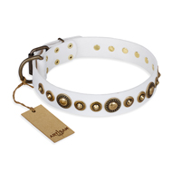 """Swirl of Fashion"" FDT Artisan Delicate White Leather Belgian Malinois Collar with Stunning Bronze-Plated Round Studs"