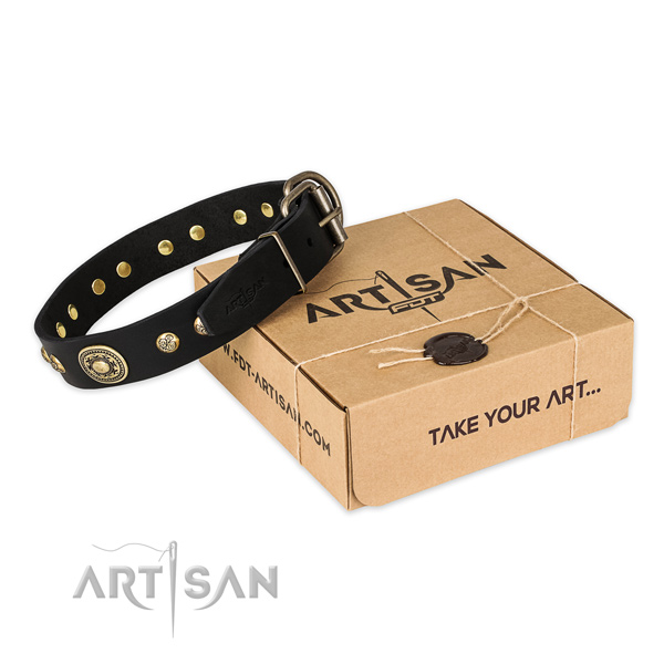 Rust-proof fittings on genuine leather dog collar for everyday use