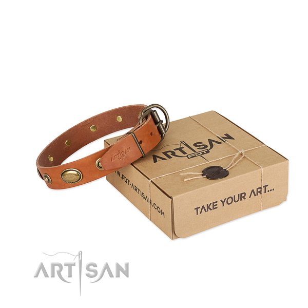Rust resistant studs on full grain leather dog collar for your doggie